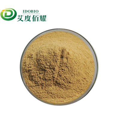 Nettle Leaf Extract Powder