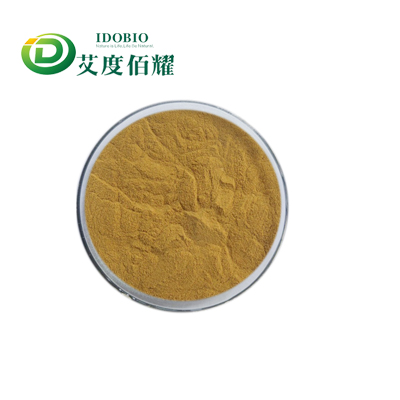 Lion Mane Mushroom Extract Powder Hericium Erinaceus Extract