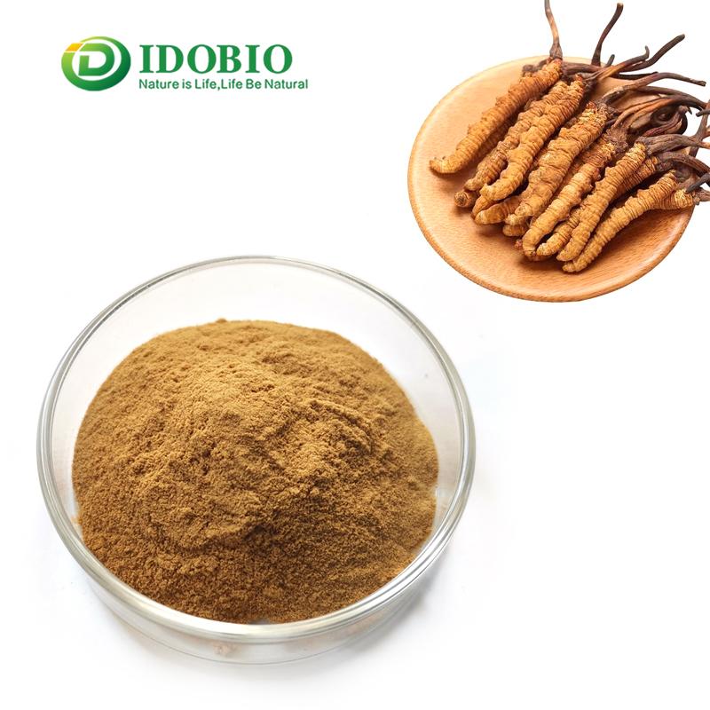 organic cordyceps sinensis extract 10%-50% polysaccharides