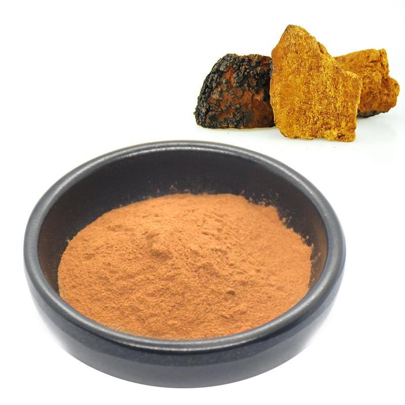 100% Natural Chaga Extract Polysccharide 10% 20% 30%