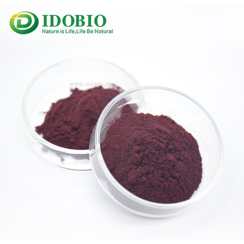 EU NOP Organic Blueberry Fruit Extract Powder  Anthocyanin 5% -25%