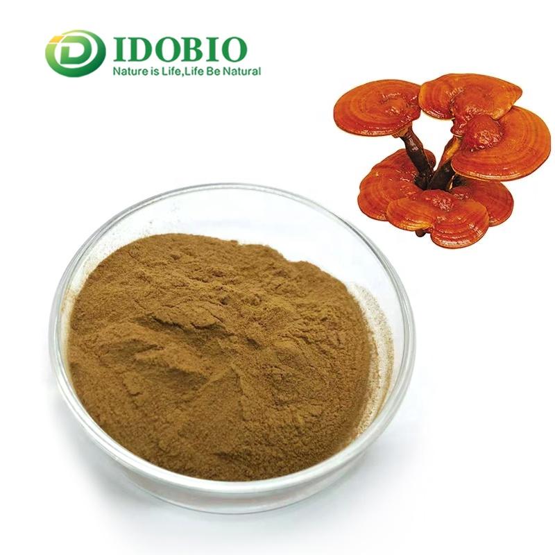 Organic Reishi Mushroom Powder in Bulk