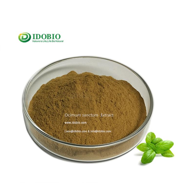 Ocimum Sanctum Powder/Basil Extract/Ocimum Sanctum P.E.