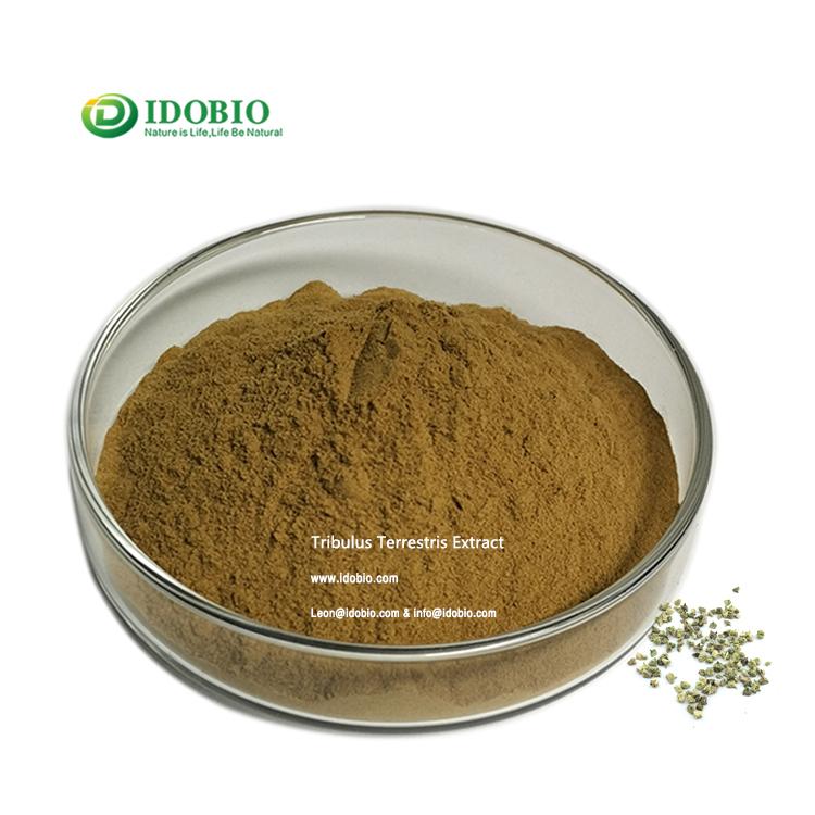 Herbal Supplements Tribulus Terrestris Extract