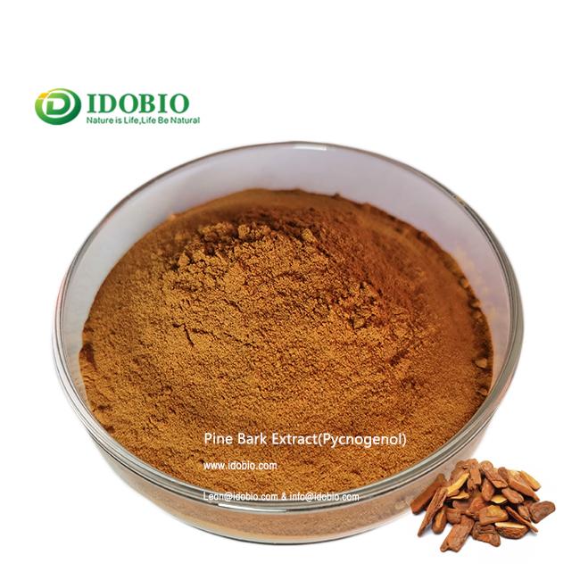 Pine Bark Extract pycnogenol extract