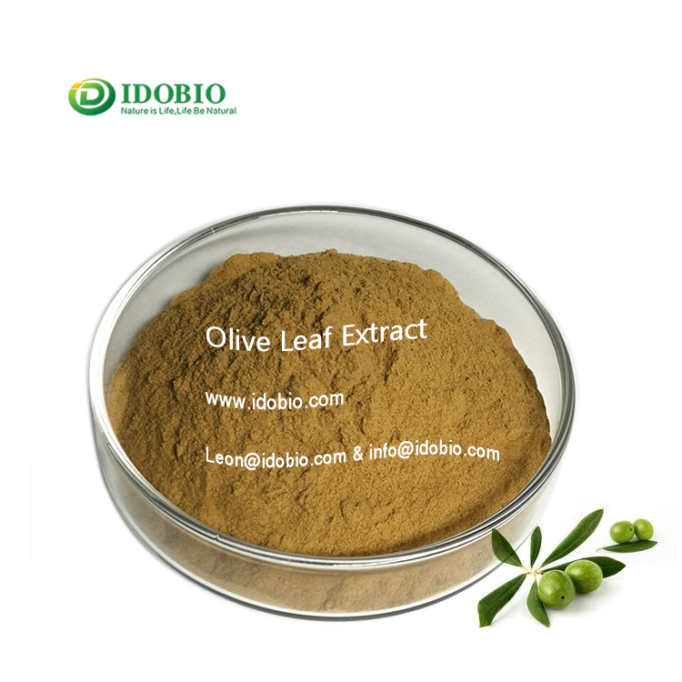 Olive Leaf Extract Oleuropein 20%-98% CAS 32619-42-4